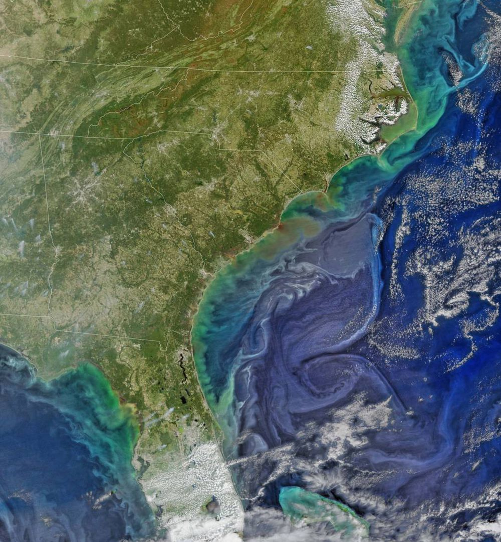 South Carolina, real pictures of earth from space.